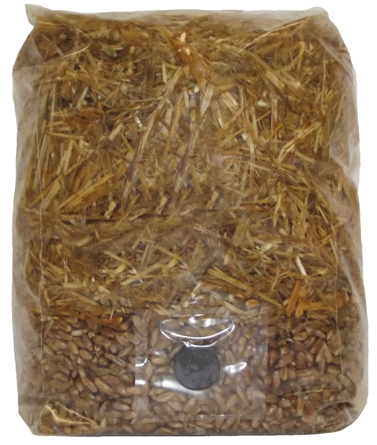 Wheat Straw Based All in One Mushroom Grow Bag